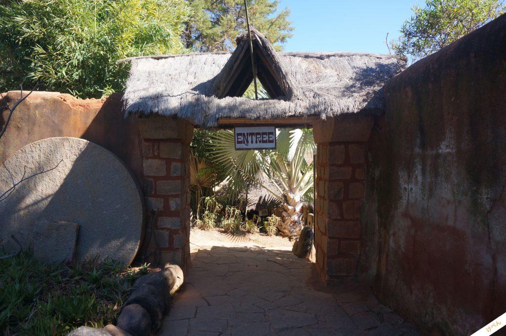 Lemurs Park 01