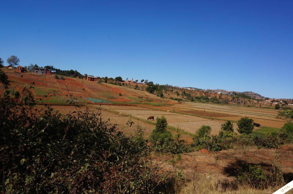 Madagascar townscape 12